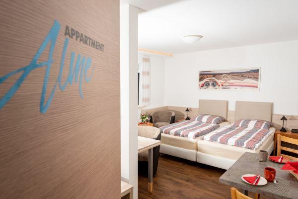 Blick in das Apartment Alme